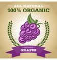 Organic Grapes vector image vector image