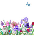tender floral empty template with butterfly vector image vector image