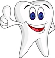 Tooth Character cartoon vector image