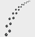 Dogs footprints vector image