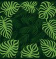 border frame tropical palm leaf 10eps vector image