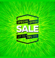 sale bright banner vector image