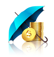 umbrella and money vector image vector image