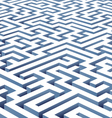 maze illustration vector image vector image