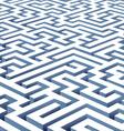 maze illustration vector image