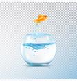 boiling fish aquarium composition vector image