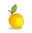 icon lemon fruit design vector image