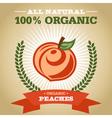 Organic Peach vector image