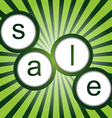 Sale poster with sunburst vector image vector image