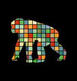 chimpanzee monkey primater color silhouette animal vector image