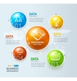 Infographic and Ball or Globe vector image