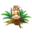 A stump with a tiger vector image vector image
