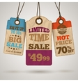 Cardboard sale promotion tags vector image