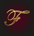 f golden letter vector image