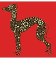 Floral greyhound silhouette vector image