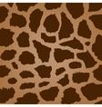 giraffe texture vector image