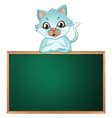 A cat above the greenboard vector image vector image