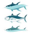 topic of tuna vector image