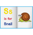 A picture of a snail in a book vector image