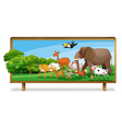 Animals in jungle on board vector image