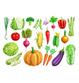 vegetable watercolor set for healthy food design vector image