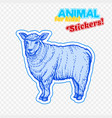farm animal sheep in sketch style on colorful vector image