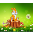 Cute bunny sitting on tree stump grass background vector image vector image