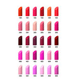 set of color lipsticks palette vector image