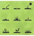 Grow a plant vector image
