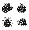 Black silhouette ladybugs on white background vector image