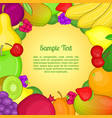 fruits concept cartoon style vector image