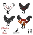 Chiken cuts vector image