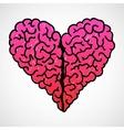 Doodle Brain Heart vector image