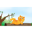 tiger resting on wood vector image vector image