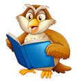 Owl reading vector image