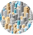 Big isometric city vector image vector image