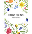 botanical card with spring flowers vector image