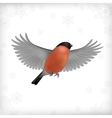 Winter Christmas Flying Bird Bullfinch vector image