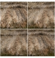 Dry straw texture Collection of abstract vector image