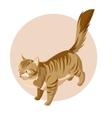 Isometric standing cat icon vector image