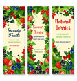 Fresh berries and fruits banners set vector image