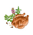 chicken dish with spices vector image