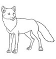 naturalistic of fox vector image