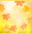 autumn background with blurred maple fallen leaves vector image