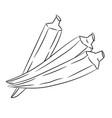 okra ladys finger cartoon - line drawn vector image