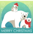 Greeting Card with Polar bear family vector image