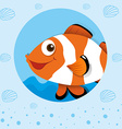 Clownfish with happy face vector image vector image