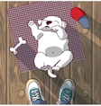 Puppy cute rest sleep on the floor and owner vector image vector image