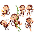 Little monkeys doing different things vector image vector image