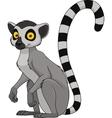 Adult funny lemur vector image